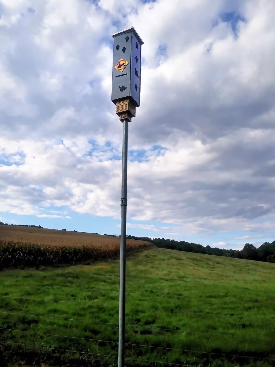 2 chamber large rocket bat box standing upright in a green field